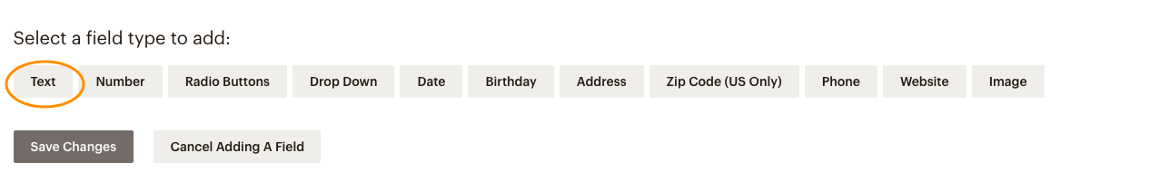 Mailchimp Select a field type to add